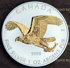Gilded 2014 Canadian Birds of Prey Bald Eagle 1 oz Silver Coin, 24K Gold Gilt