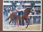 SECRETARIAT in post parade for the 1973 Belmont