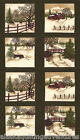MODA Fabric Quilt Panel ~ THROUGH THE WINTER WOODS ~ by Holly Taylor  24
