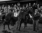 1937 Triple Crown Racehorse WAR ADMIRAL Glossy 8x10 Photo Kentucky Derby Poster