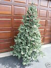 Frontgate Xmas Christmas Nobel Fir Artificial Tree 10' Pre Lit Clear Lights