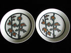 2 Dish Plates Crown Lynn Autumn New Zealand Stoneware Pottery shallow bowls Rare