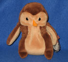 TY HOOT the OWL BEANIE BABY - MINT with NEAR PERFECT TAG