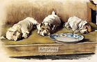 For What We Have Received by Cecil Aldin Art Print of Vintage Art