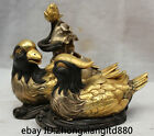 Lovely Chinese Bronze 24k Gold Mandarin Duck Love Bird With lotus leaf Statue Y