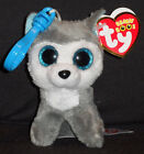 TY BEANIE BOOS - SLUSH THE DOG KEY CLIP - MINT with MINT TAG - GLITTER EYES