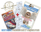 Premium Owl Pellet Essentials 1 Pack
