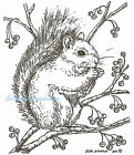Winter Squirrel With Berries Wood Mounted Rubber Stamp NORTHWOODS M8323 New