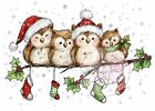 Christmas Owls On A Branch Unmounted Rubber Stamp Wild Rose Studio CL460 New
