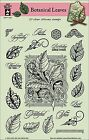 Botanical Leaves Clear Unmounted Rubber Stamp Set 23 Stamps HOTP 1208 Leaf New