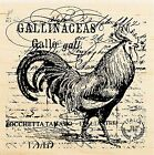 ROOSTER Bird Collage Wood Mounted Rubber Stamp Stampendous Stamp W113 NEW