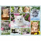 Ravensburger Kitten In A Basket Jigsaw Puzzle (500 Pieces). Brand New