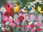 Songbirds and Cosmos a 500-Piece Jigsaw Puzzle by Sunsout Inc.