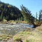 PLACER MINING CLAIM DOLORES RIVER COLORADO GOLD SILVER ORE MINE DOLORES COUNTY