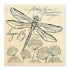 Dragonfly Wings Wood Mounted Rubber Stamp Stampendous W182 NEW