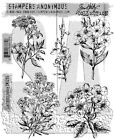 Tim Holtz Cling Rubber Stamps 2017 Illustrated Garden CMS295 Stampers Anonymous