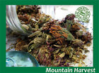 Organic Red Clover Whole Dried Tops Herb (Trifolium Pratense)