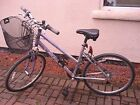 Falcon Hawaii Ladies Bike with Front basket