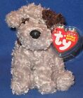 TY FIZZER the DOG BEANIE BABY - MINT with MINT TAG