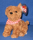 TY ROWDY the DOG BEANIE BABY - MINT with MINT TAGS