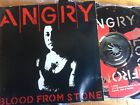 ANGRY ANDERSON - Blood From A Stone CD 1990 Mushroom