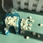 Temporary Crowns Posteriors Molar Resin Tooth Teeth Polycarbonate Caps Dental