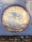 American Eagle Silver Dollar 1995 Toned NOT FOR SALE TOO NICE