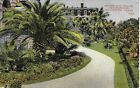 Among the Palms and Flowers Galveston TX vintage postcard postally used in 1911