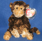 TY SWINGER the MONKEY BEANIE BABY - MINT with MINT TAGS
