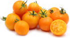 Tomato Chef's Choice Orange,  25 seeds