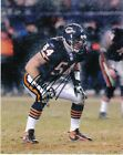 Brian Urlacher Rookie Cards and Memorabilia Guide 60