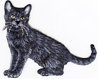 BLACK CAT CAT KITTEN PETS ANIMALS Iron On Embroidered Applique Patch