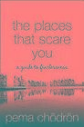 Places That Scare You - A Guide to Fearlessness-NEW-9780007183500 by Chodron, Pe