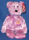 TY DABBLES the BEAR BEANIE BABY - MINT with MINT TAG - RETIRED BBOM