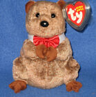 TY PUNXSUTAWNEY PHIL 2009 GROUNDHOG BEANIE BABY - COC EXCLUSIVE - NEAR MINT TAGS