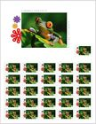 FROG red eyed tree frog PRE ORDER Full SHEET Canada 2018 06s18
