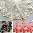 Embroidered Lace Mesh Trims Edge Bridal Wedding Dress Costume Sewing Craft Decor