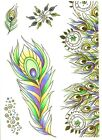FEATHER Collection Clear Unmounted Rubber Stamp Set STUDIO LIGHT STAMPSL269 New