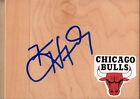 Chicago Bulls Collecting and Fan Guide 73