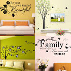 Family Photo Tree Wall Decal Sticker Large Vinyl Photo Picture Frame Removable