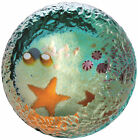 New boxed CAITHNESS GLASS Seabed Starfish paperweight U14070 rock pool