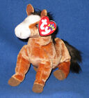 TY OATS the HORSE BEANIE BABY - MINT with MINT TAG