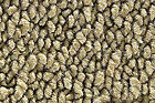 Fits 1968-1970 Plymouth Satellite 4dr Auto Loop Carpet