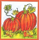 Fall Pumpkin Pair Autumn Wood Mounted Rubber Stamp NORTHWOODS C10487 New