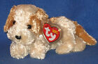 TY BANJO the DOG BEANIE BABY - MINT with NEAR PERFECT - MINT TAG