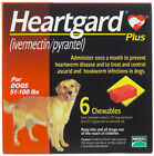 Heart gard Plus 6 Chewable Tablets for Dogs up to 51 100 lbs exp 11 2020