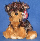 TY TYGER  the YORKSHIRE YORKIE DOG BEANIE BABY - MINT with MINT TAGS