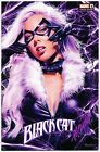 BLACK CAT 1 Mike Mayhew Studio Variant Cover A  B Set Signed with COAs