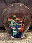 Beautiful Large MURANO Tropical Fish Aquarium Art Glass Sculptured Paperweight