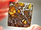 MUSEUM QUALITY AMAZING CRYSTALS BEAUTIFUL BRAHIN PALLASITE METEORITE 78 GMS
